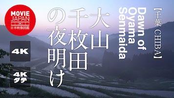 大山千枚田の夜明け
