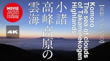 小諸 高峰高原の雲海