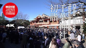 千葉神社 初詣