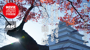 紅葉の鶴ヶ城