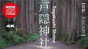 戸隠神社・二