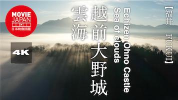 越前大野城 雲海