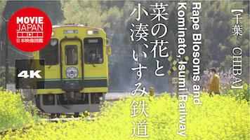 菜の花と小湊、いすみ鉄道